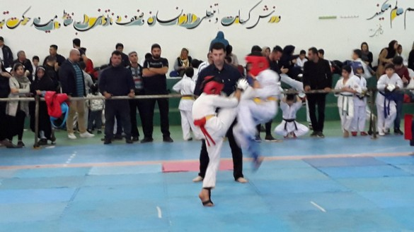 Iran Ghasemi February 2019 8