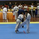 Asian Pacific Kumite (10) (800x600)