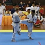 Asian Pacific Kumite (11) (800x600)