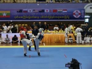 Asian Pacific Kumite (12) (800x600)