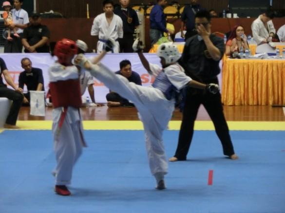 Asian Pacific Kumite (15) (800x600)
