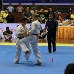 Asian Pacific Kumite (17) (800x600)