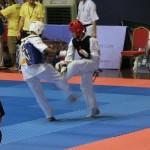 Asian Pacific Kumite (2) (800x600)