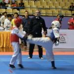 Asian Pacific Kumite (6) (800x600)