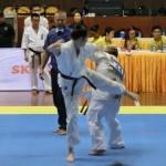 Asian Pacific Kumite (8) (800x600)