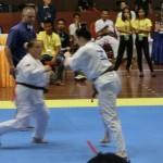 Asian Pacific Kumite (9) (800x600)