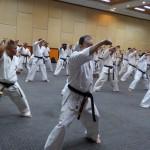 Asian pacific Seminar (4) (800x450)