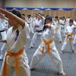 Asian pacific Seminar (5) (450x800)