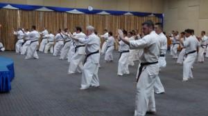 Asian pacific Seminar (7) (800x450)